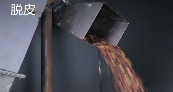 善行天下山茶油生产流程之油茶籽筛选及脱壳