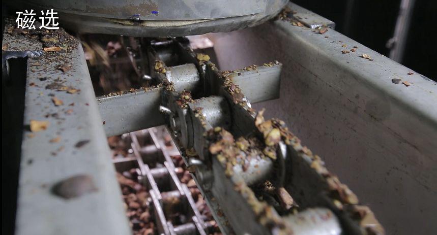 善行天下山茶油生产流程之茶籽仁清理